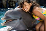 Swin with the Dolphins at Ocean World